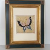 蝶の額 Butterfly